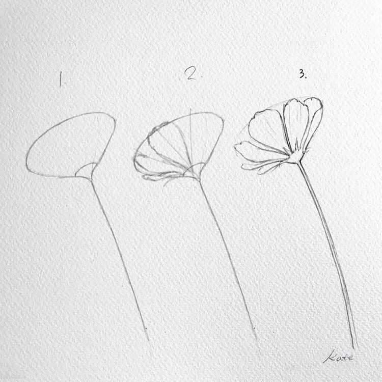 Perierga.gr - Πώς να ζωγραφίσετε λουλούδια σαν επαγγελματίες σε 3 απλά βήματα
