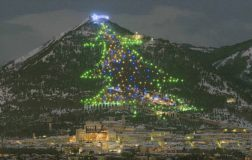 Perierga.gr - Το μεγαλύτερο χριστουγεννιάτικο δέντρο σύμφωνα με το ρεκόρ Γκίνες