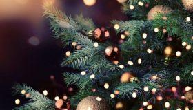 Perierga.gr - Τι να αποφύγετε για τον στολισμό του χριστουγεννιάτικου δέντρου