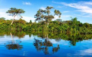 Perierga.gr - Ταξίδι 360 μοιρών στον Αμαζόνιο