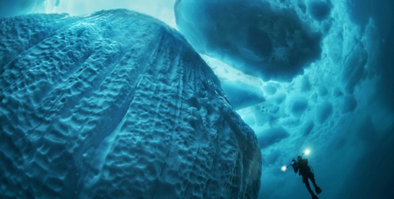 Perierga.gr - Φωτογραφίζοντας παγόβουνα από κοντά