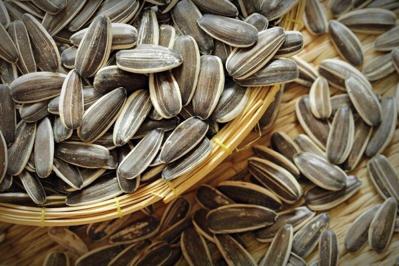Perierga.gr - Οι καλύτερες τροφές για ισχυρό ανοσοποιητικό
