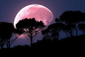 Perierga.gr - Ροζ υπερπανσέληνος: Εντυπωσιακό θέαμα απόψε στον νυχτερινό ουρανό