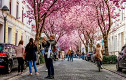 Perierga.gr - Κάνουμε βόλτα σε όμορφους δρόμους απ΄ όλο τον κόσμο