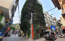 Perierga.gr - Πενταώροφη πολυκατοικία στη μέση της πόλης καλύπτεται από αναρριχώμενα φυτά