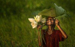 "Perierga.gr - Όμορφες φωτογραφίες με θέμα το ""πράσινο"""