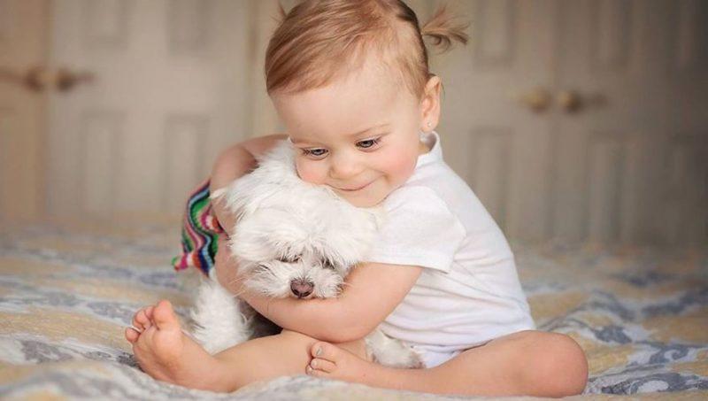 Perierga.gr - Παιδιά και ζώα: Η πιο τρυφερή σχέση!